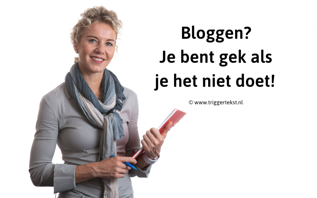 Bloggen & ondernemerschap … je bent gek als het niet doet!